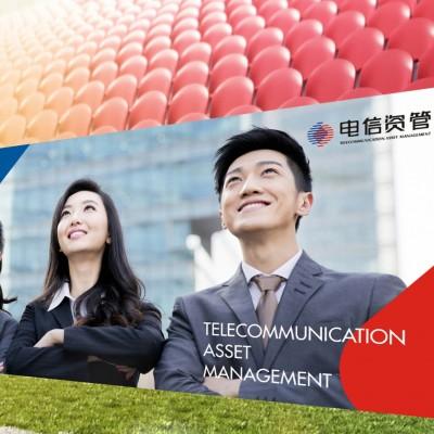 中国电信电信资管品牌设计